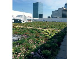 Largest vegetated roof in Atlanta